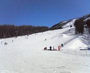 20100124snowb3.jpg