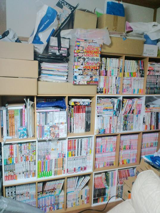 100215-bookshelf.jpg