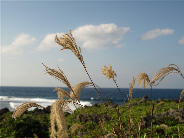 秋の海と空-3