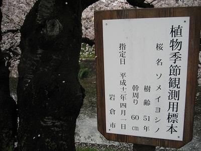 0409IWAKURA6.jpg