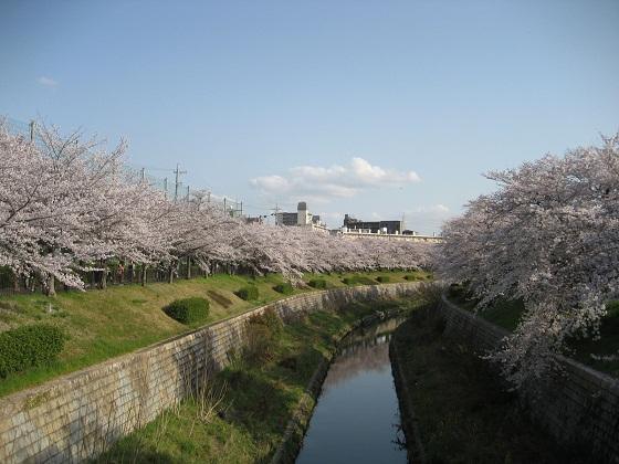 0409YAMAZAKI6.jpg