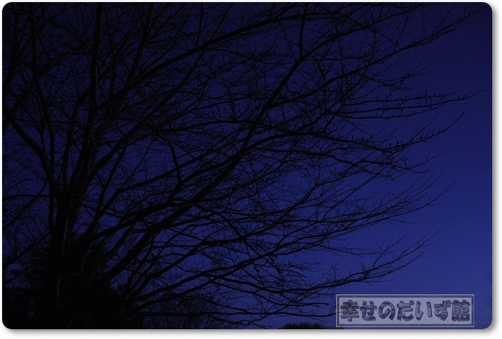 DPP_2675-013.jpg