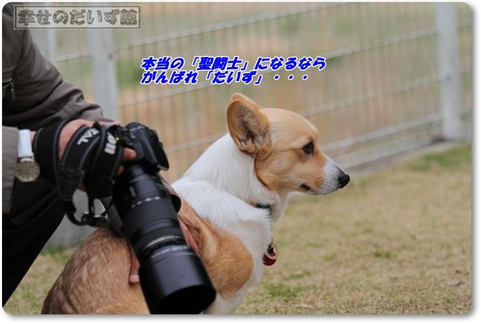 DPP_3536-024.jpg