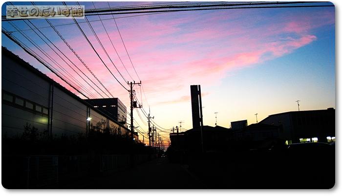 daizukan1-IMG_9598.jpg