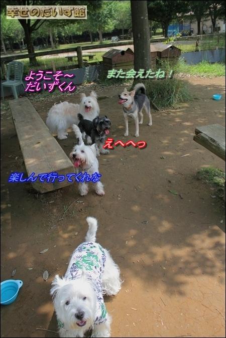 dpp-0415.jpg