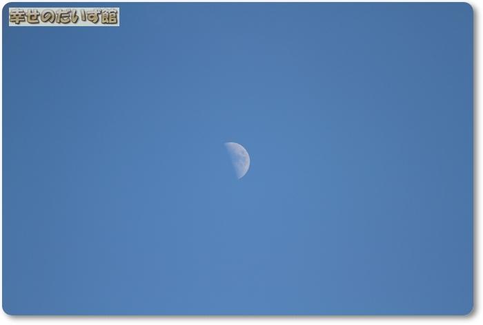 dpp-0546.jpg