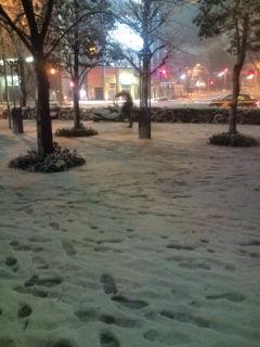 大雪@新宿近辺