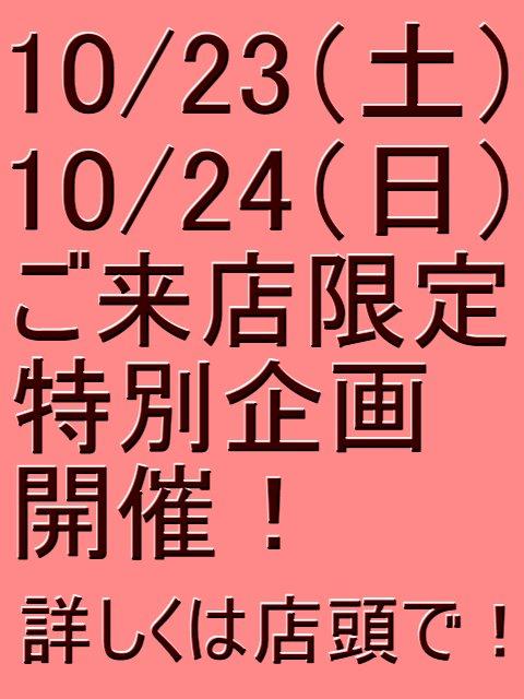 10_20101022202102.jpg