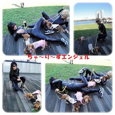 daiba3.jpg