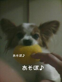 遊ぼう~1