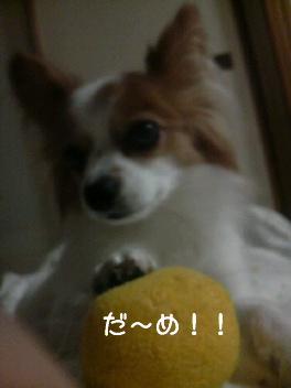 遊ぼう~4