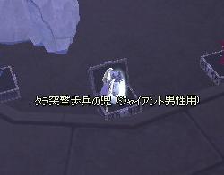 2010032806.jpg