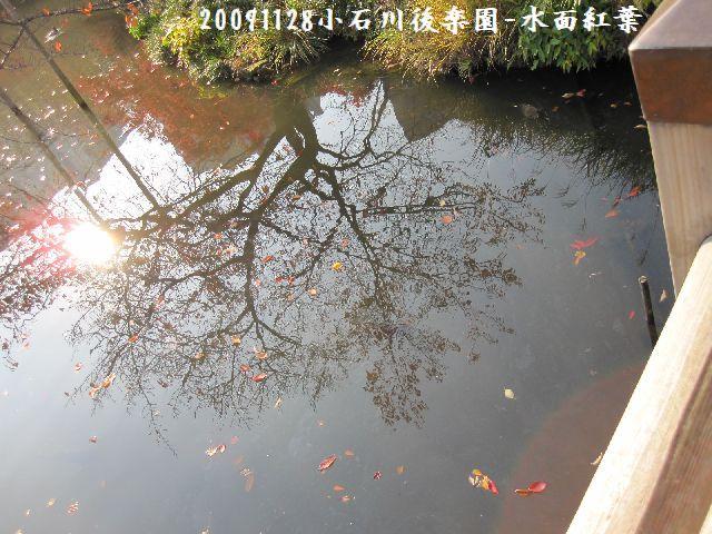 091128koishikawa10