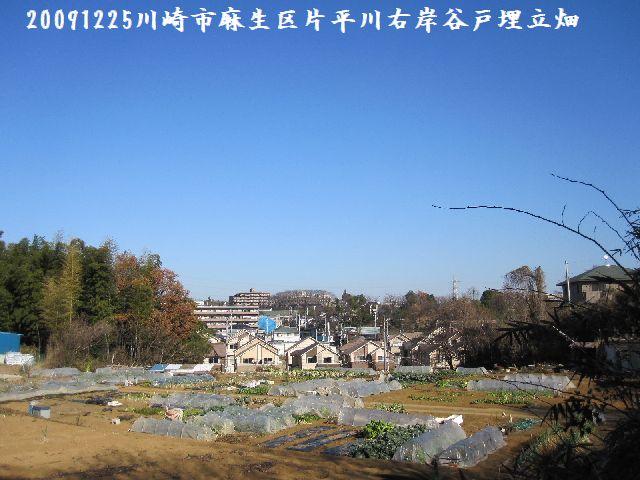 091225katahira35