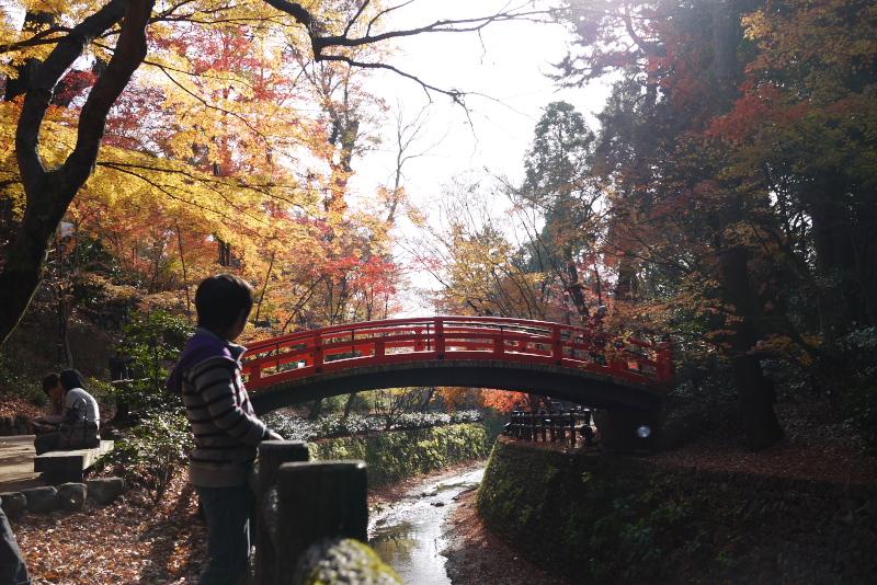 fukawara5.jpg
