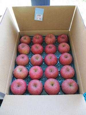 化粧箱 りんご