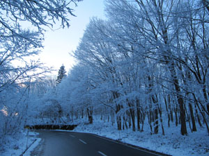 12月8日景色