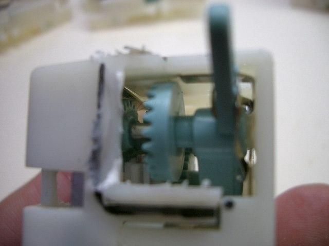 CIMG5935_resize1.jpg
