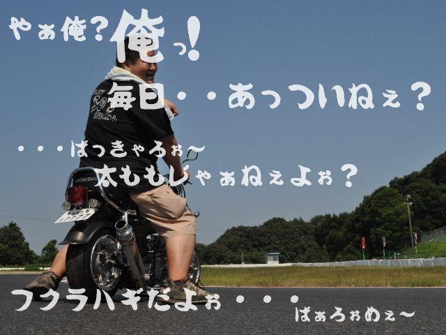 SSC_0495.jpg
