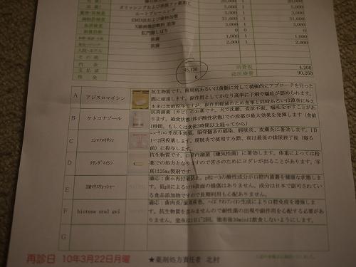 P1020771.jpg