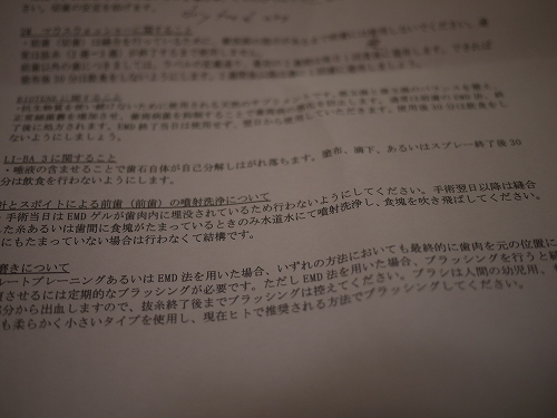 P1020776.jpg