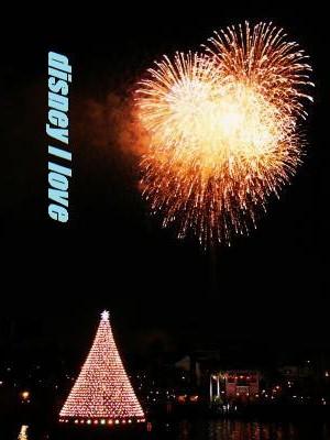 2009.クリスマス花火