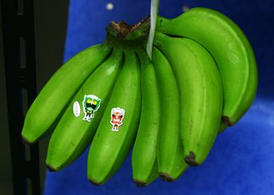 shima-banana