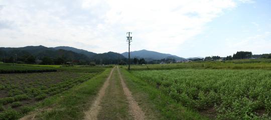 20090919_nagashinojo-10.jpg