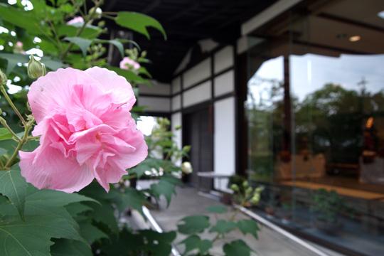 20090923_kiyosu_castle-13.jpg