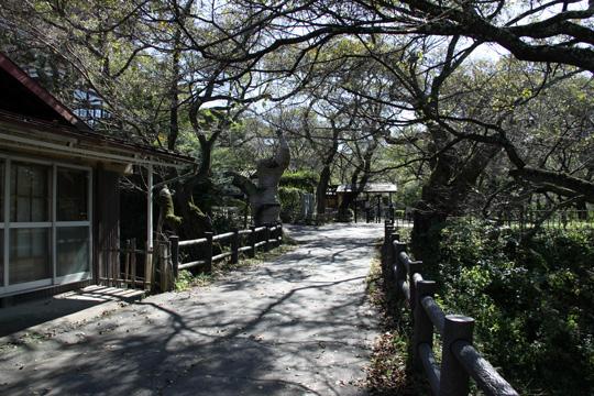 20091011_takato_castle-15.jpg
