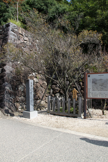 20091012_takeda_shrine-09.jpg