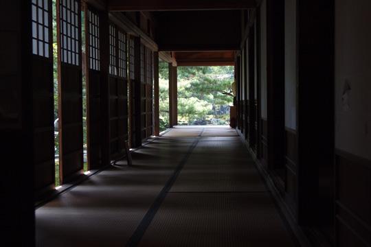 20091017_shibata_city-06.jpg
