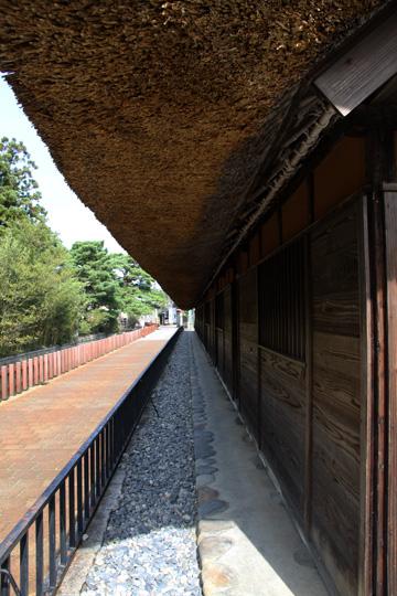 20091017_shibata_city-18.jpg