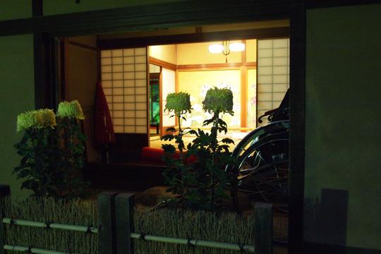 20091121_shibamata-08.jpg