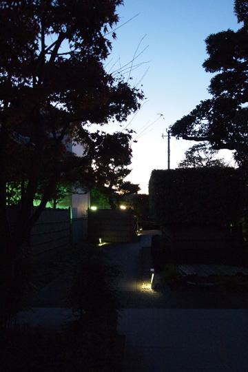 20091121_shibamata-09.jpg