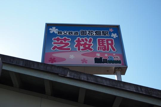 20091123_ohanabatake-01.jpg