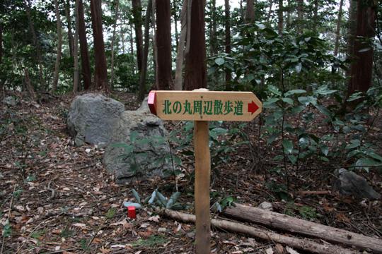 20100110_iwakuni_castle-36.jpg