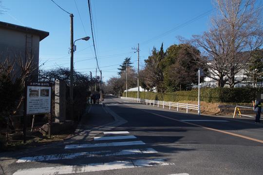 20100116_sakura_castle-03.jpg