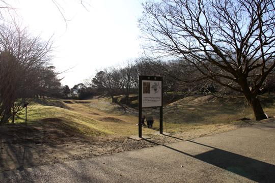 20100116_sakura_castle-05.jpg
