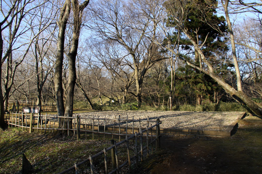 20100116_sakura_castle-25.jpg
