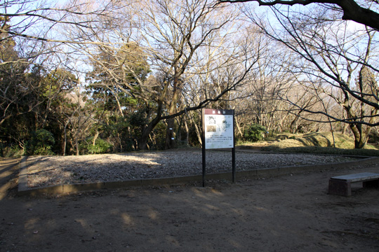 20100116_sakura_castle-28.jpg