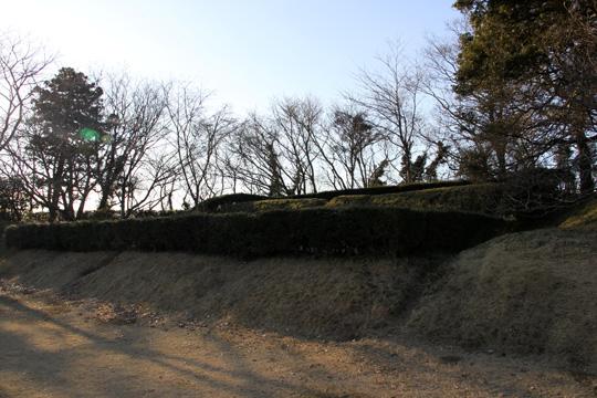20100116_sakura_castle-30.jpg