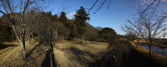 20100116_sakura_castle-34.jpg