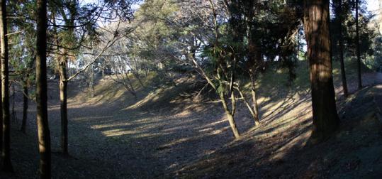 20100116_sakura_castle-37.jpg
