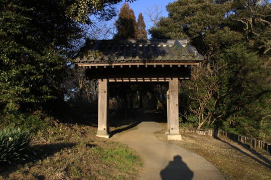 20100116_sakura_castle-39.jpg
