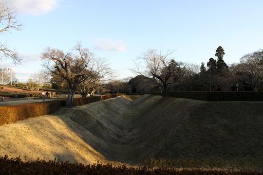20100116_sakura_castle-47.jpg