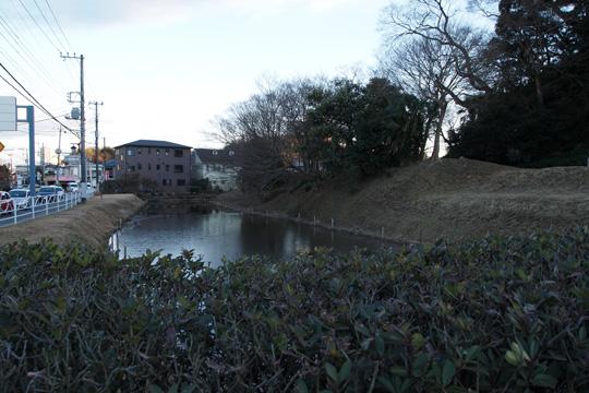 20100116_sakura_castle-55.jpg
