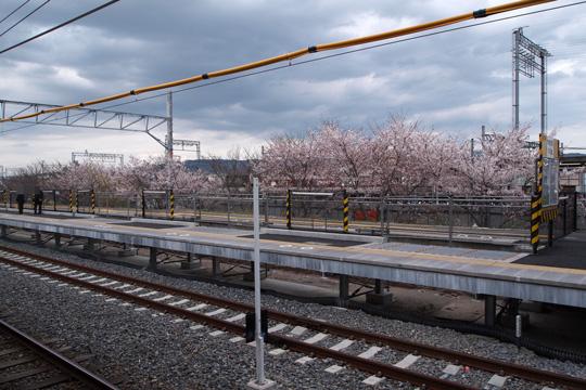 20100410_hosono-01.jpg
