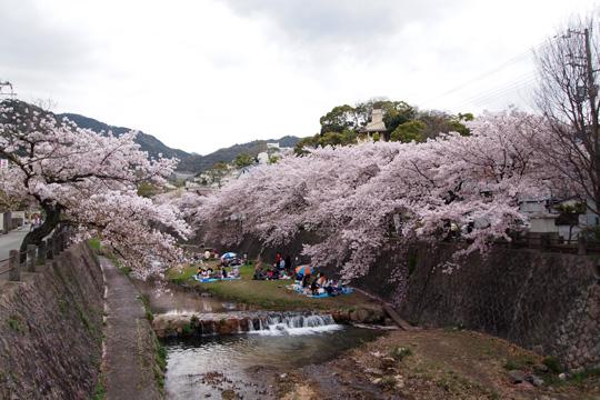 20100411_ashiyagawa-01.jpg