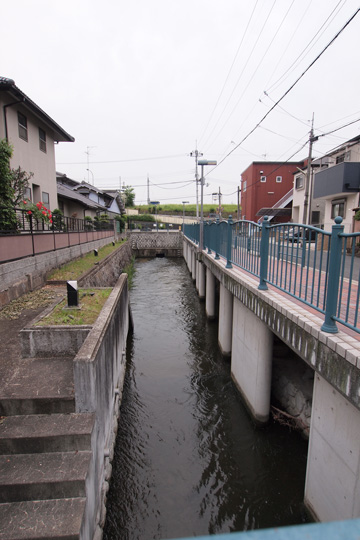 20100522_nagase_river-02.jpg